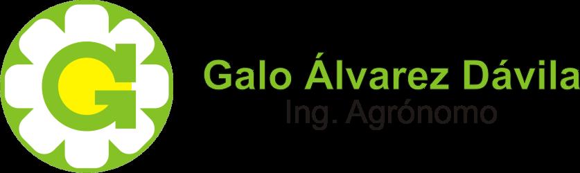 Galo Alvarez Davila